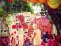 Camel Festival DSC05618