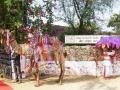 Camel Festival DSC05621
