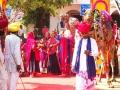 Camel Festival DSC05622